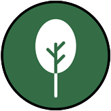 Tree Care Icon